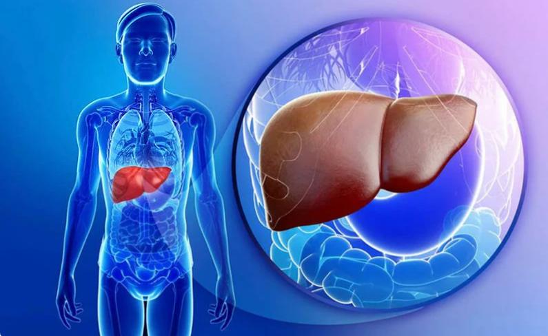 Гипотония желчного пузыря: что это, симптомы, причины и ...